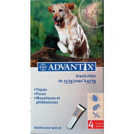 ADVANTIX GRAND CHIEN +25Kg 4 PIP