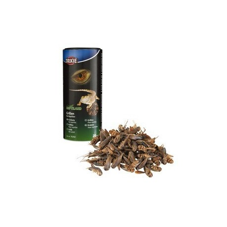 Grillons, seches 250 ml/25 g