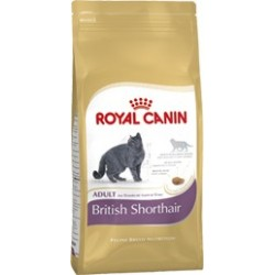 FBN BRITISH SHORTHAIR ADULT 4KG