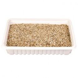 Sachet de semences herbe a chats pour R 4235 sac/env. 100 g